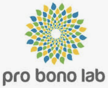 Panorama du pro bono